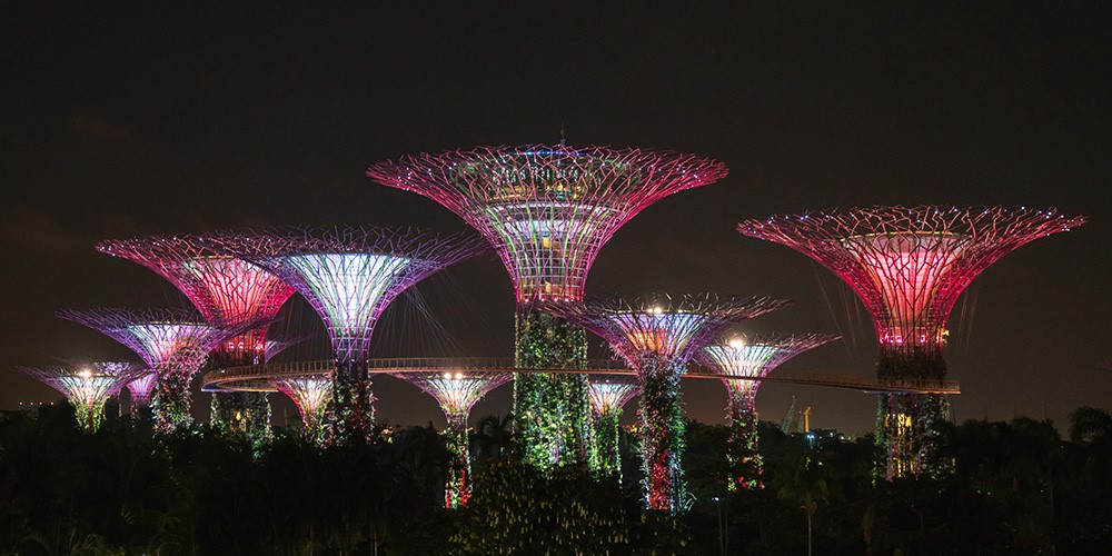 Supertree Grove in Gardens by the Bay in Singapore by Michael Schulz